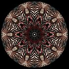 Steampunk Kaleidoscope 004 by fantasytripp
