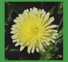 Pale Yellow Mary Bud Marigold With Garden Background Kids Tee