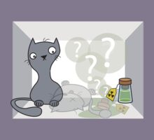 Schrödinger's cat is.... alive by BenGilliland