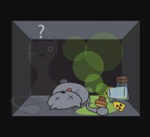 Schrödinger's cat is.... not alive by BenGilliland