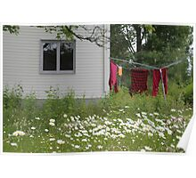 Late summer. Backyard. Poster