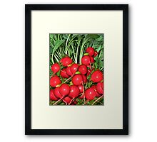 "。◕‿◕。 RADISH (RAPHANUS SATIVUS) RAPHANUS MEANS ""QUICKLY APPEARING"" 。◕‿◕。 Framed Print"