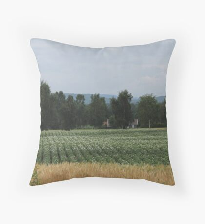 Just late summer landscape along the road. Elverum, Norway. Potato crop. Throw Pillow