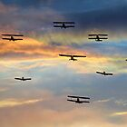 Sunset fly past  by larry flewers