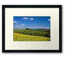 3 Color Framed Print
