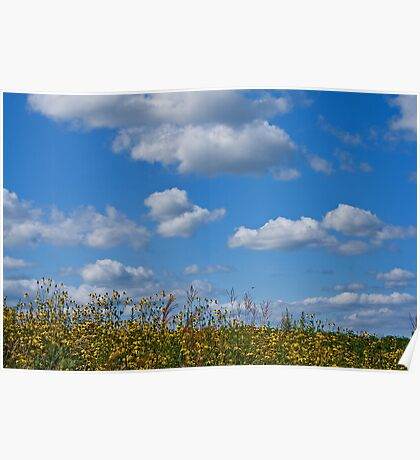 Blue sky Poster