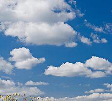 Blue sky by jasonksleung