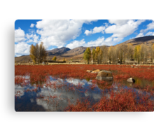 Red Grass Beach Canvas Print