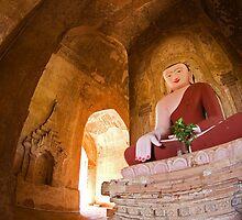 Buddha by jasonksleung