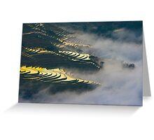 Terraced rice field Greeting Card