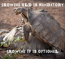 Growing old is mandatory.. Growing up is optional! Birthday greetings. by BungleThreads