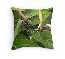 Little drops of water... Throw Pillow
