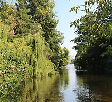 Kensington Gardens by corrado