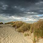 Dunes and Marram Grass by Judi Lion