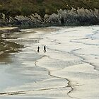Walkers in the waves by Judi Lion