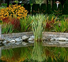 Reflected Garden Beauty... by Carol Clifford