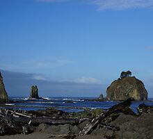 First Beach, LaPush, Washington by Loisb