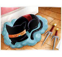 Ninja Cat Nap Poster