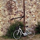A Bicycle in Europe by James2001