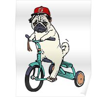 Pug Bicycling Poster