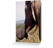 Lazy nose Greeting Card