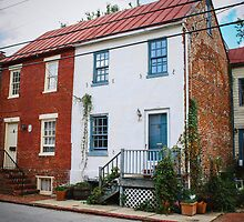 Annapolis Homes by comeinalone