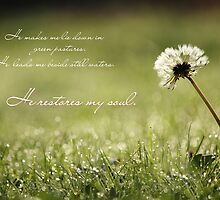 He Restores My Soul - Card by Tracy Friesen