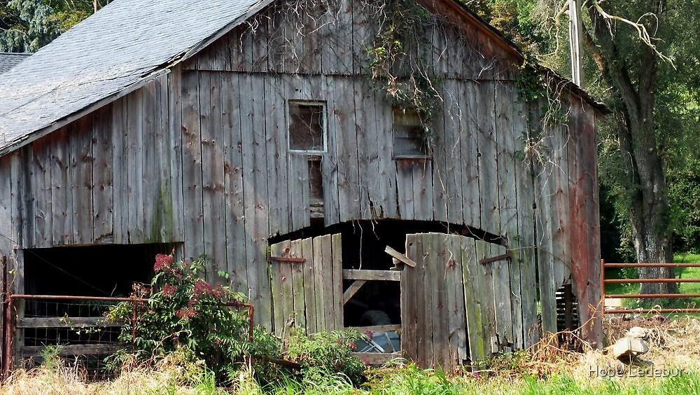 Old Barn in Flintville by Hope Ledebur