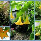 Moon Flowers in Gold #1 by Paula Tohline  Calhoun
