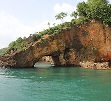 St Lucia Tunnel of Love by Sheryl Hopkins