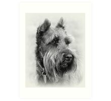 Bearded Dog Art Print