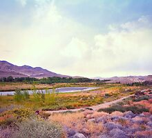 Field by Truckee River by Tracy Jones