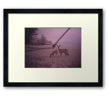 A Mother and her babies Framed Print