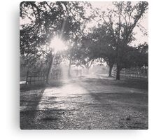 Rain and Shine Willow Style Canvas Print