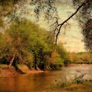 Autumn Scene by Linda Miller Gesualdo