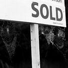 Housing Market by Samantha Higgs