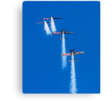 The Blades' Extra 300LPs over the top Canvas Print