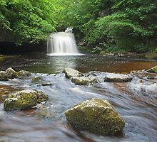 Cauldron Falls at West Burton by Judi Lion