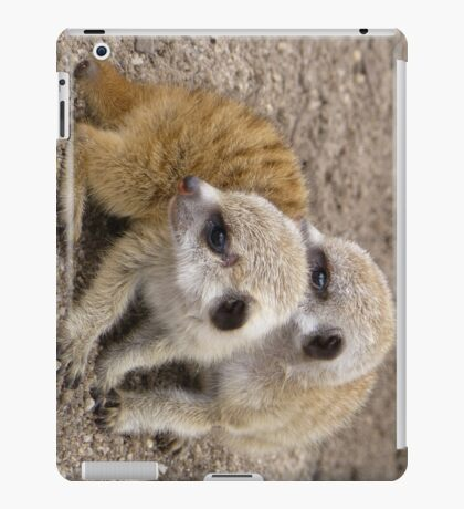 Two of a Kind iPad Case/Skin