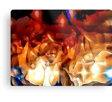 WILD PLAINS Metal Print