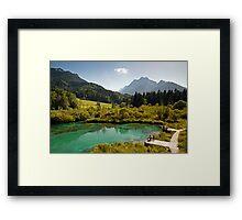 Natural Reserve Zelenci Slovenia Framed Print