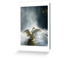 Water Mist Bathing Greeting Card