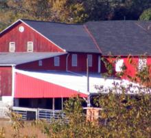 Pennsylvania Barn and Silos - Fall Foliage Farm Scene  Sticker