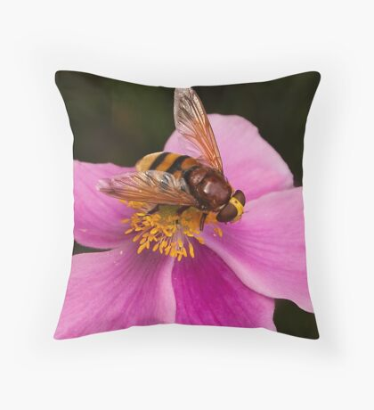 ...into the world of insects..  [FEATURED] Throw Pillow