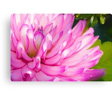 Pink and Purple Flower Canvas Print