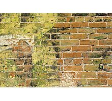 Brick Wall 3 Photographic Print