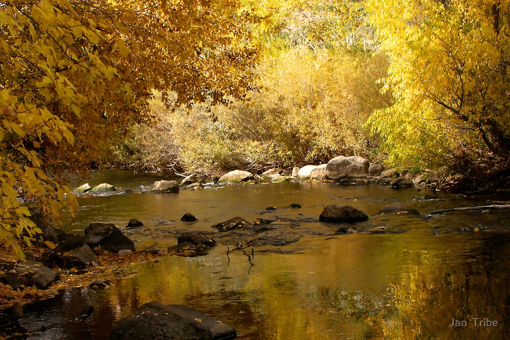 Golden View of the Ogden River by Jan  Tribe