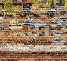 Brick Wall 4 by Photopa