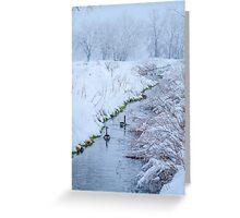 Winter Geese Greeting Card