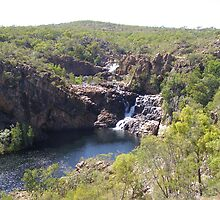 Nearing the top we see the 1st & 2nd Falls, Edith River. by Rita Blom